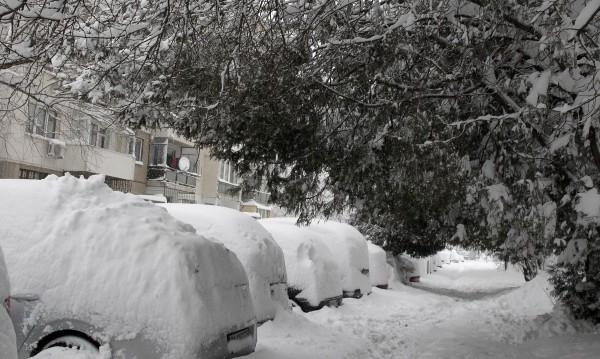 Най-дебелата снежна покривка – в Свищов