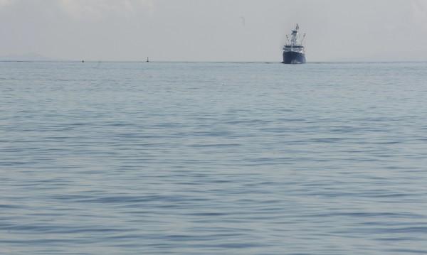 Сомалийските пирати с нов бизнес – охраняват кораби
