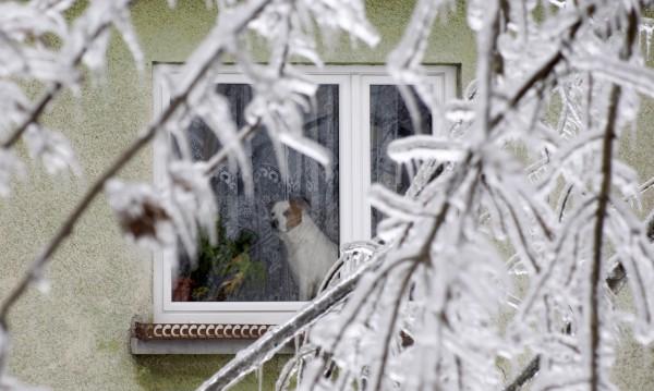 Оранжев код за студ в 16 области – живакът пада до -20°