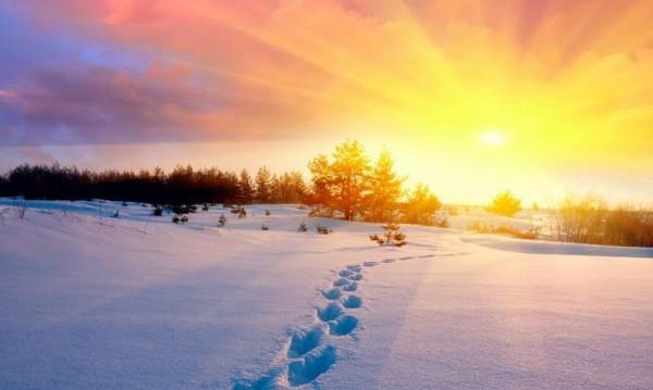 Подранила януарска пролет – утре до 15 градуса