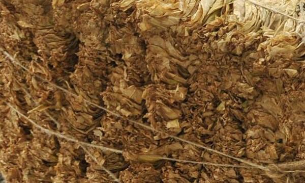 В Португалия конфискуваха 182 тона контрабанден тютюн