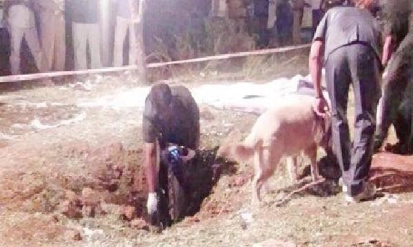 Карма ли? Метеорит падна в Индия и взе жертва