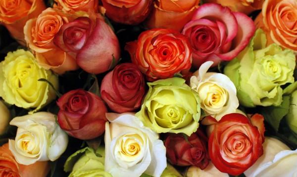 Посланията на цветята за Свети Валентин