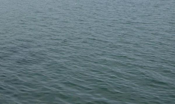 21-годишен младеж се хвърли в река Русенски Лом