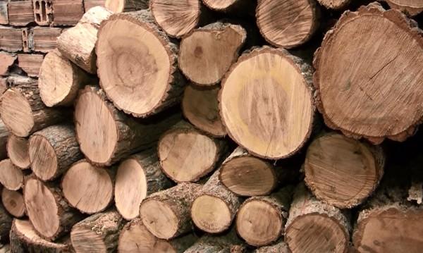 Срещу контрабандата: Складовете за дърва с камери