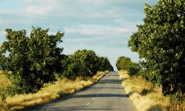 По селските пътища без винетка, по другите – с електронна