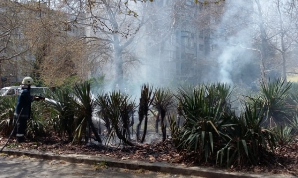 Междублокова градинка беше изпепелена във Варна