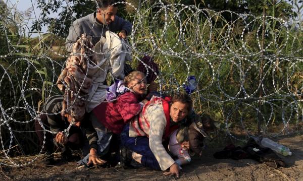 15% от бежанците имат основание за закрила