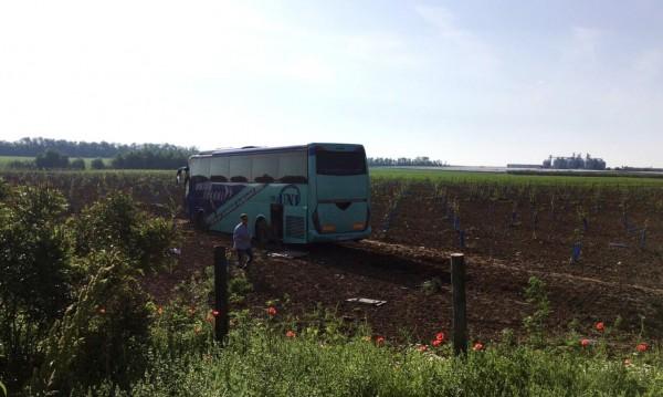 Елен причинил катастрофата на автобуса в Силистренско