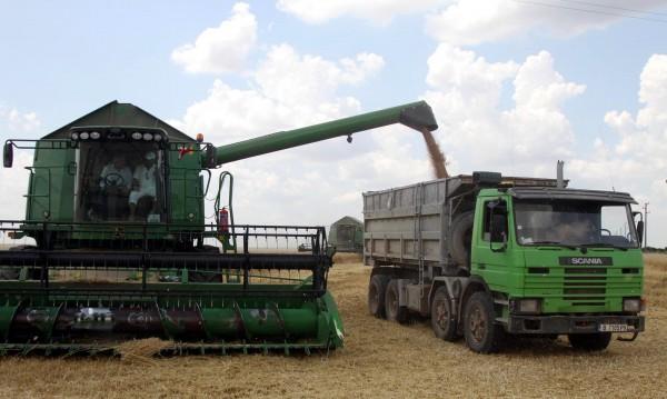 Много зърно, ниски цени и накрая... дефицит