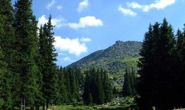 Експерт: На планина само с психично съвместими