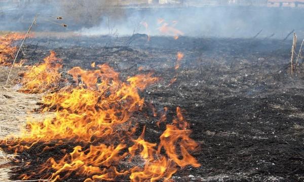 Голям пожар гори и не спира край Пловдив