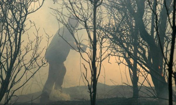 Дядо и внук предизвикали пожара в Хасковско