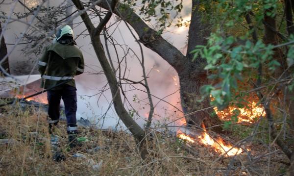 Нови 20 пожара пламнаха в страната