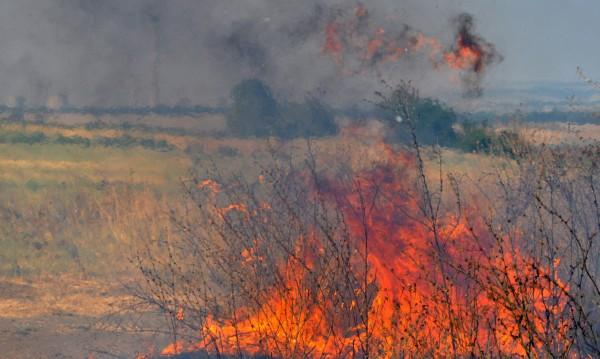 "Сухи треви пламнаха край магистрала ""Тракия"""