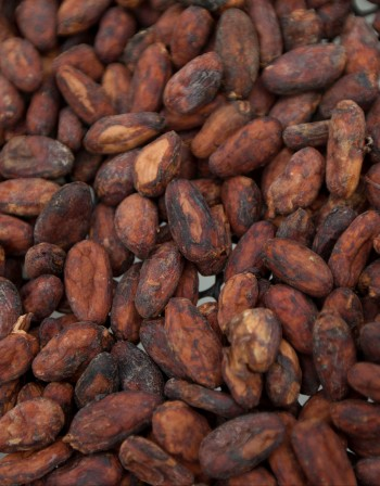 Искате млада кожа - пробвайте с какаово масло!