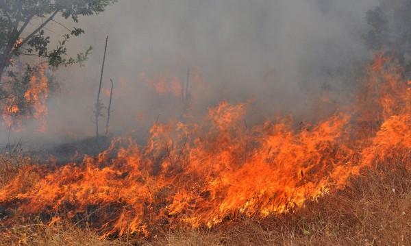 Продължава битката с пожара в община Гълъбово