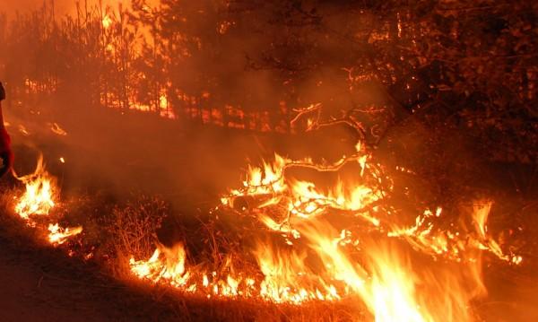 Нов пожар гори, този път край казанлъшко село