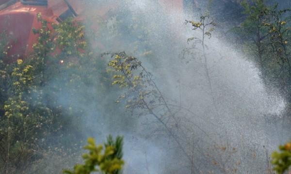 Трети ден се борят с пожарите на Тасос