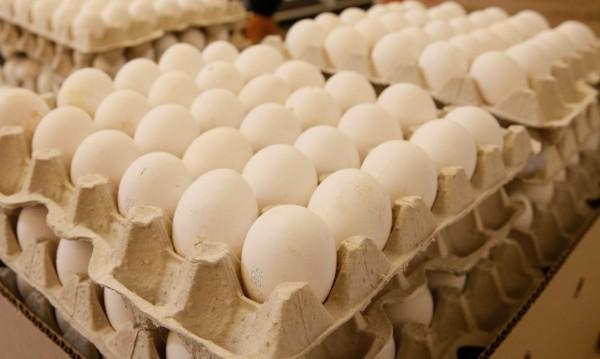 Съветът на специалиста: Мийте яйцата преди употреба!