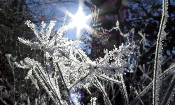 Утре времето отново ще е слънчево, но хладно