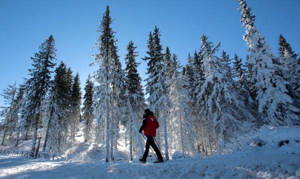 Чака си ни голям студ тези дни, но не и невиждан за България