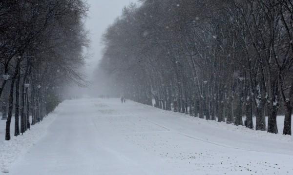 295 селища са без ток – в Сливен, Добрич, Силистра...