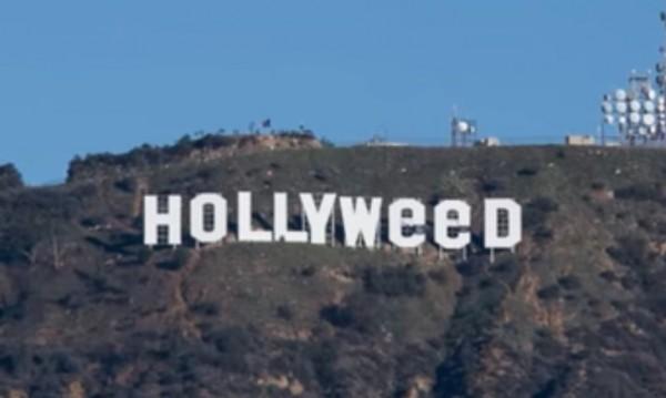 Hollyweed: Вандализмът и последствията...