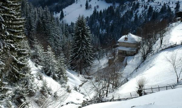 Зимата – чудна, но истерията изгони хората от курортите