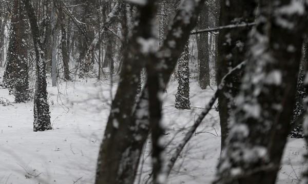 Чудо: Сърбин паднал в кладенец и оцелял при -20°C