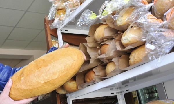 Добро сърце: Каруцари превозиха 1300 хляба за бедстващи