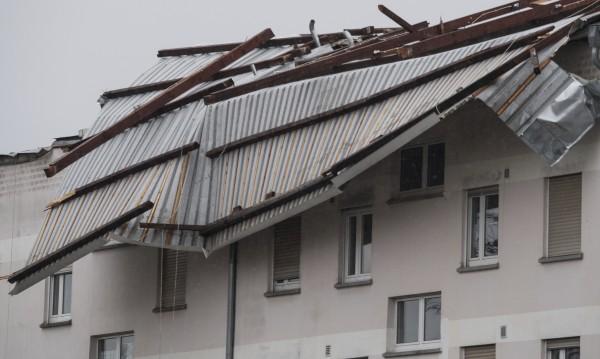 Дърво падна и уби жена пред децата й в Ница