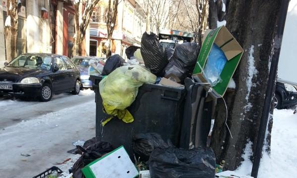 Зарязана кола в тревата, боклуци: 450 бона глоби за софиянци