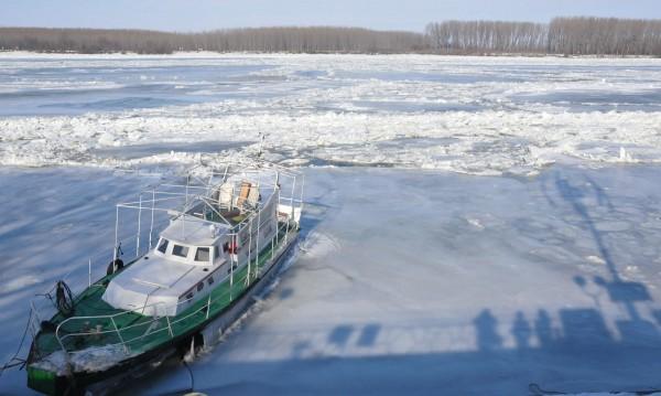 Дунав взе жертва – ловец гонил патица