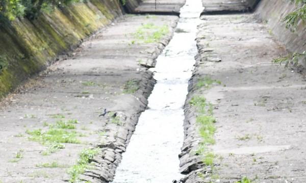 Проект за 1,5 млн. ще следи реките в Софийско