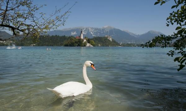 Красивото езеро Блед – перлата на Словения