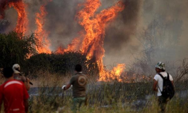 Над 20 000 души се борят с горските пожари в Чили