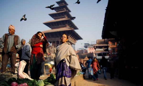 Знаете ли, че... В Непал има повече от 360 вида орхидеи?