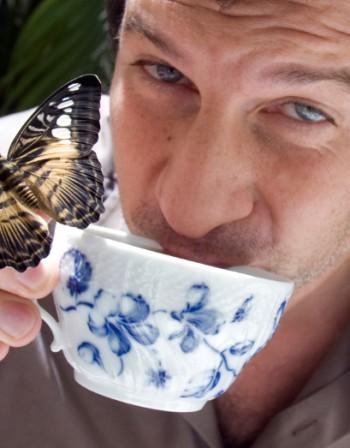 Помощ при простуда – чай от борови иглички