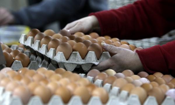 Русия забрани птичи продукти от България заради птичия грип