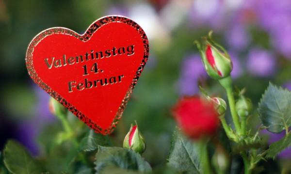 Пакистан забрани Св. Валентин, пречило на исляма