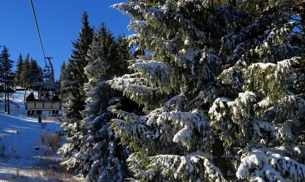Пролетта настъпва: Слънце и температури до 11° днес
