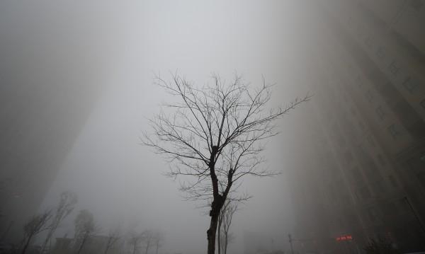 Мръсният въздух – пагубен, състарява кожата скоростно