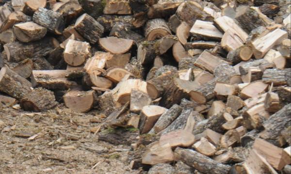 Данъчни се прицелиха в търговци на дърва за огрев
