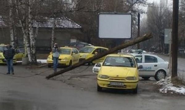Нелеп инцидент: Дървен стълб падна върху такси