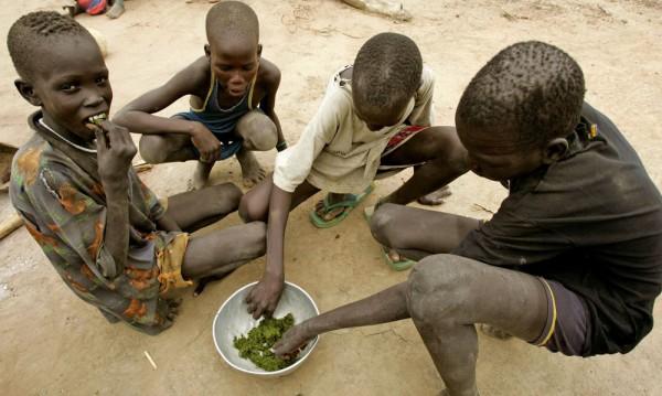 Двайсет млн. души застрашени от глад в страни с конфликти