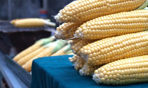 Хапвайте царевица за здраво сърце и силен имунитет