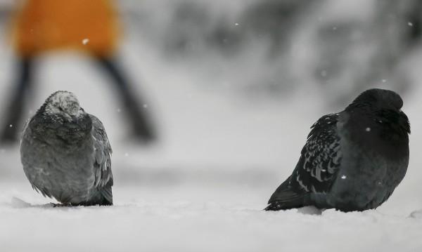 """Сняг през април изненада шофьорите на прохода """"Шипка"""""""