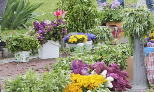 Цветя и клонки наберете, у дома ги отнесете… Цветница е!