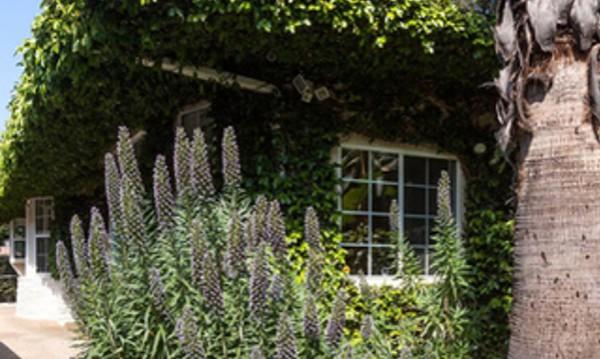 Отворени врати: В дома на Джаред Лето